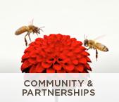 Community & Partnerships