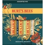 Beeswax Bounty - Assorted in Display - Holiday