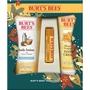 Burt's Bees® Honey Pot - Holiday