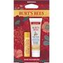Burt's Bees Hive Favorites Beeswax Gift