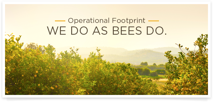 Operational Footprint