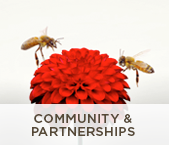 Community & Partnerships